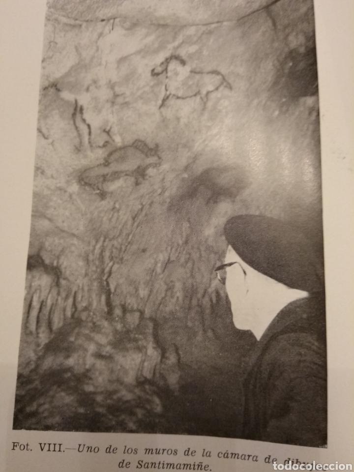 Libros de segunda mano: EL HOMBRE PREHISTÓRICO Y EL ARTE RUPESTRE EN ESPAÑA CUEVAS VIZCAYA MONTE CASTILLO LEVANTE - Foto 8 - 151556396