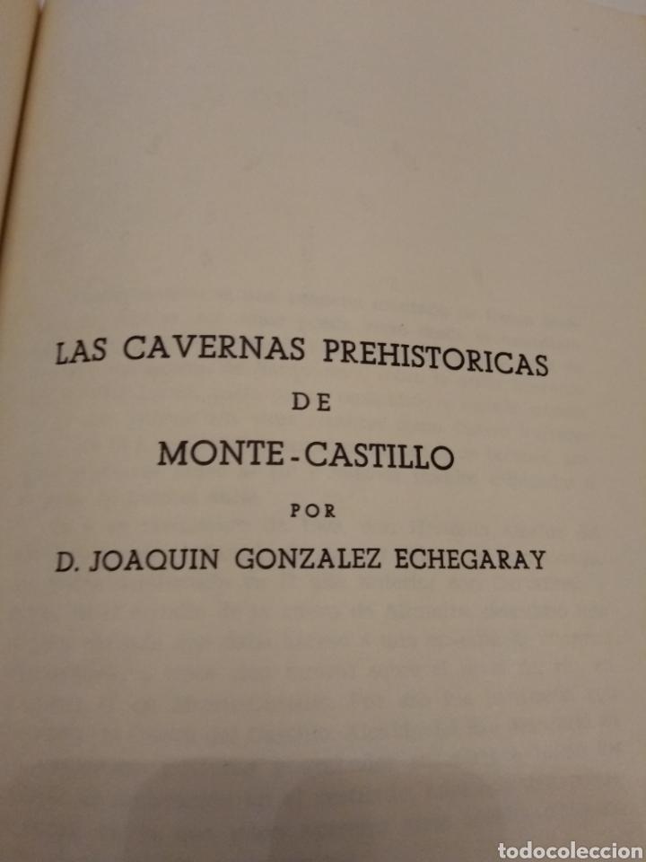 Libros de segunda mano: EL HOMBRE PREHISTÓRICO Y EL ARTE RUPESTRE EN ESPAÑA CUEVAS VIZCAYA MONTE CASTILLO LEVANTE - Foto 11 - 151556396