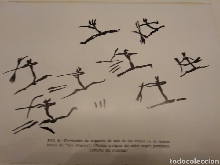 Libros de segunda mano: EL HOMBRE PREHISTÓRICO Y EL ARTE RUPESTRE EN ESPAÑA CUEVAS VIZCAYA MONTE CASTILLO LEVANTE - Foto 15 - 151556396