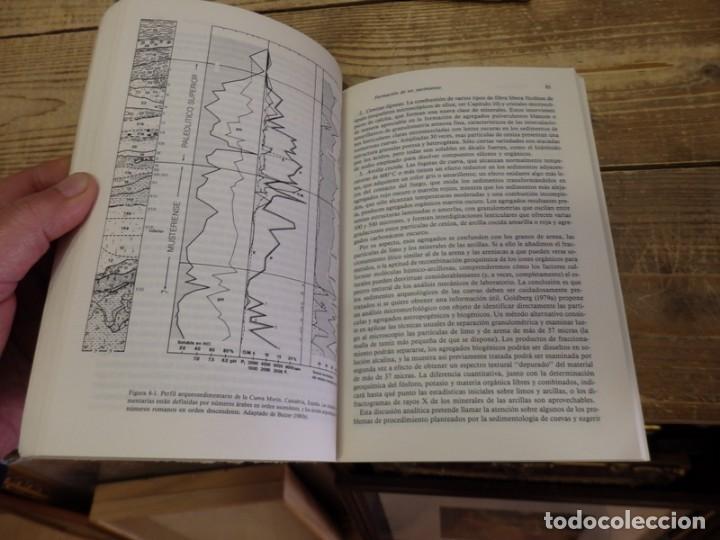 Libros de segunda mano: ARQUEOLOGÍA, UNA ECOLOGÍA DEL HOMBRE. Método y teoría para un enfoque contextual. - BUTZER, Karl W.- - Foto 4 - 156524630