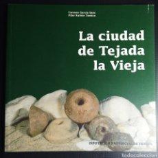 Libros de segunda mano: LA CIUDAD DE TEJADA LA VIEJA. HUELVA. ARQUEOLOGÍA. HISTORIA. CARMEN GARCÍA, PILAR RUFETE. 1995. Lote 163985405