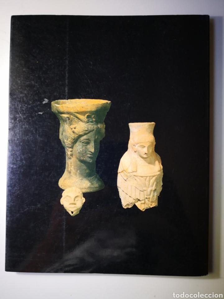 Libros de segunda mano: Un segle de arqueología Valenciana Diputació de Valencia prehistoria - Foto 3 - 168538516