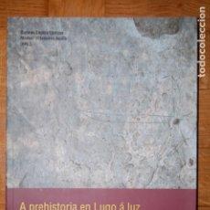 Libros de segunda mano: A PREHISTORIA EN LUGO Á LUZ DAS DESCOBERTAS RECENTES. ABRIL DE 2009.. Lote 175943904