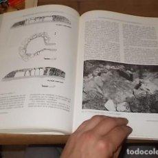 Libros de segunda mano: EXTREMADURA ARQUEOLÓGICA VIII . EL MEGALITISMO EN EXTREMADURA . MÉRIDA. 1ª EDICIÓN 2002. Lote 187120665