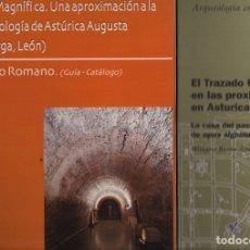 Libros de segunda mano: ASTVRICA AVGVSTA LOTE I. Lote 191165652