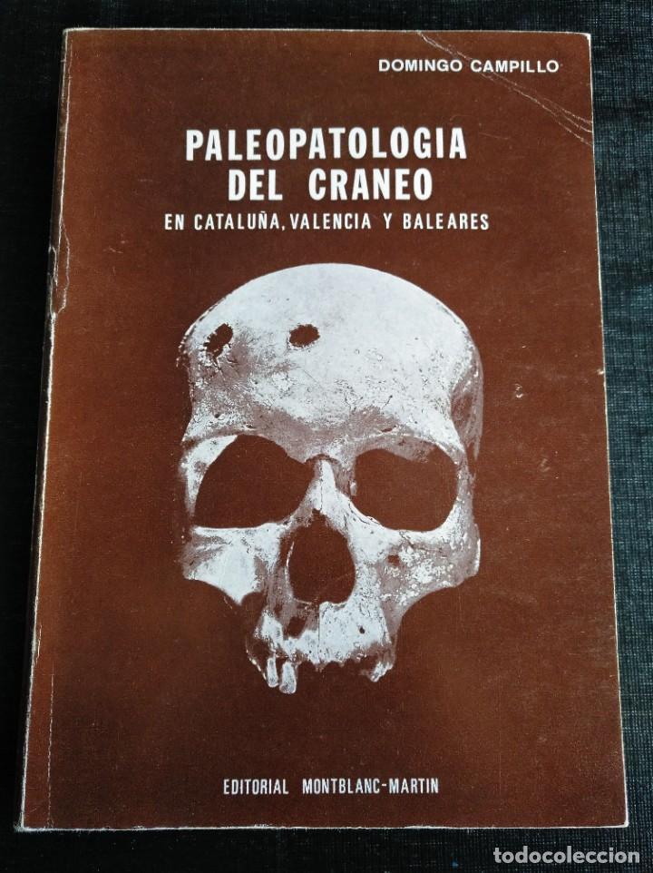 PALEOPATOLOGÍA DEL CRANEO EN CATALUÑA, VALENCIA Y BALEARES - DOMINGO CAMPILLO (Libros de Segunda Mano - Ciencias, Manuales y Oficios - Arqueología)