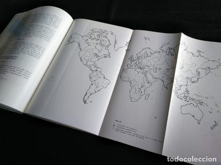 Libros de segunda mano: PALEOPATOLOGÍA DEL CRANEO EN CATALUÑA, VALENCIA Y BALEARES - DOMINGO CAMPILLO - Foto 9 - 195119312