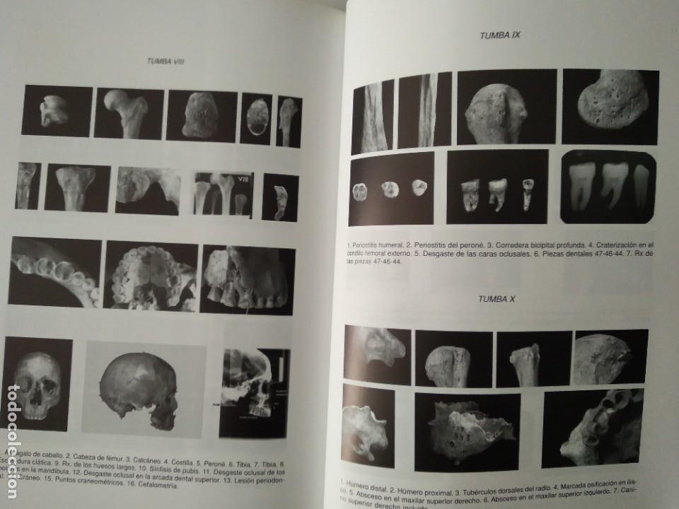 Libros de segunda mano: LA NECRÓPOLIS OCCIDENTAL DE CAESARAUGUSTA EN EL SIGLO III ---- MARÍA PILAR GALVE IZQUIERDO - Foto 7 - 196566528