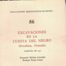 Libros de segunda mano: FERNANDO MOLINA Y ENRIQUE PAREJA. EXCAVACIONES EN LA CUESTA DEL NEGRO. (PURULLENA, GRANADA). Lote 244791695