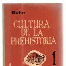 Libros de segunda mano: CULTURA DE LA PREHISTORIA 1 FRIEDRICH BEHN CULTURAS PREMETÁLICAS. Lote 246132650