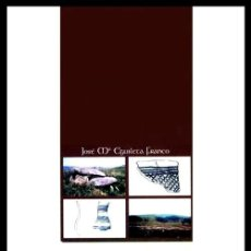 Libros de segunda mano: X111 - A BAIXA LIMIA GALEGA NA PREHISTORIA RECENTE. ARQUEOLOGIA. GALICIA. DIP. ORENSE 1999.. Lote 246197130