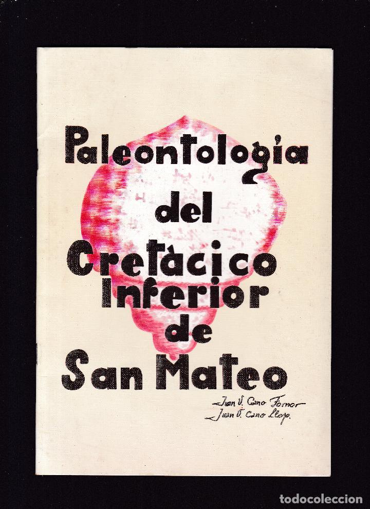 CASTELLON - PALEONTOLOGÍA DEL CRETÁCICO INFERIOR DE SAN MATEO - (Libros de Segunda Mano - Ciencias, Manuales y Oficios - Arqueología)
