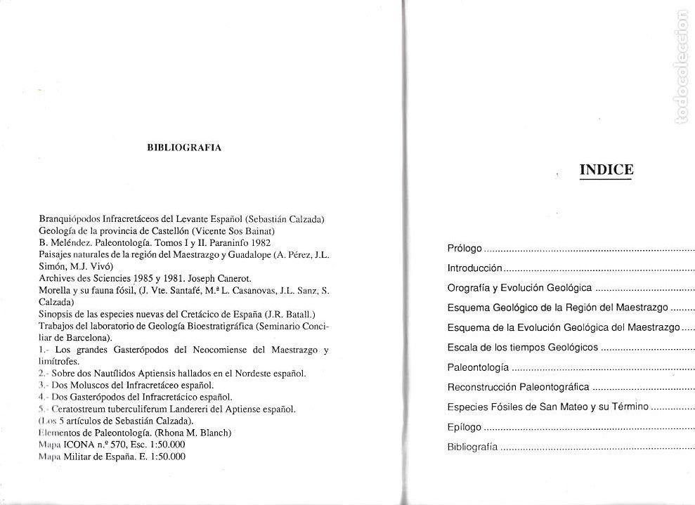 Libros de segunda mano: CASTELLON - PALEONTOLOGÍA DEL CRETÁCICO INFERIOR DE SAN MATEO - - Foto 2 - 268572599