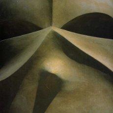 Libros de segunda mano: GAUDÍ, L'HOME I L'OBRA, JOAN BERGOS-MARC LLIMARGAS, ARQUITECTURA / ARCHITECTURE, LUNWERG, 1999. Lote 36712882