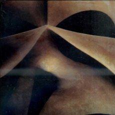 Libros de segunda mano: BERGÓS I MASSÓ / LLIMARGAS : GAUDÍ L'HOME I L'OBRA (LUNWERG, 1999) GRAN FORMATO CON ESTUCHE. Lote 48682533