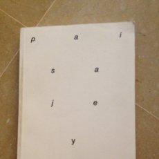 Libros de segunda mano: PAISAJE Y ESFERA PÚBLICA (ORLANDO FRANCO, MARIANO DE SANTA ANA). Lote 129434798