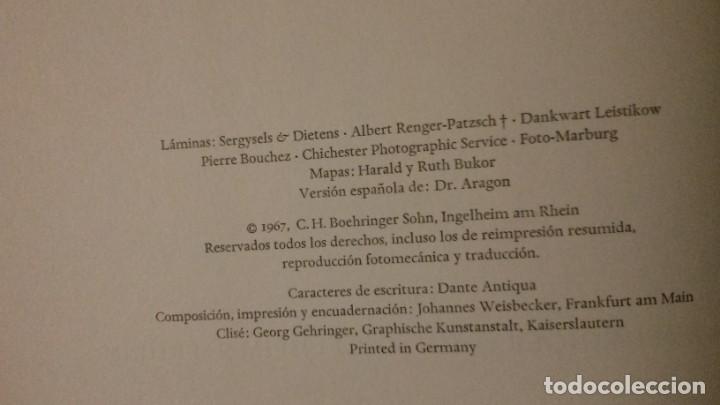 Libros de segunda mano: EDIFICIOS HOSPITALARIOS EN EUROPA DURANTE DIEZ SIGLOS-HISTORIA DE LA ARQUITECTURA HOSPITALARIA-1967 - Foto 4 - 183589440