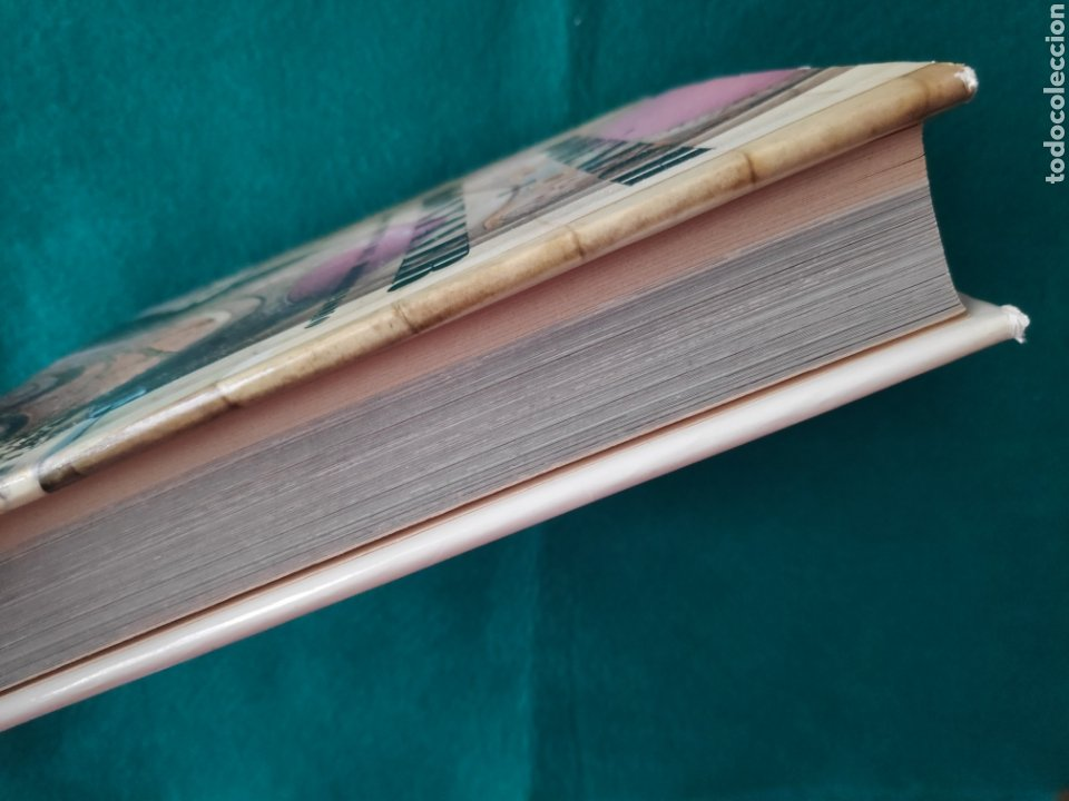Libros de segunda mano: DOMENECH I MONTANER ARQUITECTURA LIBRO FOTOGRAFÍA ARQUITECTO DEL MODERNISMO - Foto 11 - 222664700
