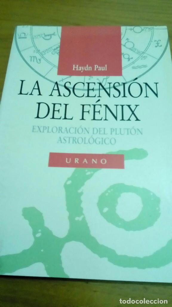 LA ASCENSIÓN DEL FÉNIX, EXPLORACIÓN DEL PLUTÓN ASTROLOGÍCO, HAYND PAUL (Libros de Segunda Mano - Parapsicología y Esoterismo - Astrología)