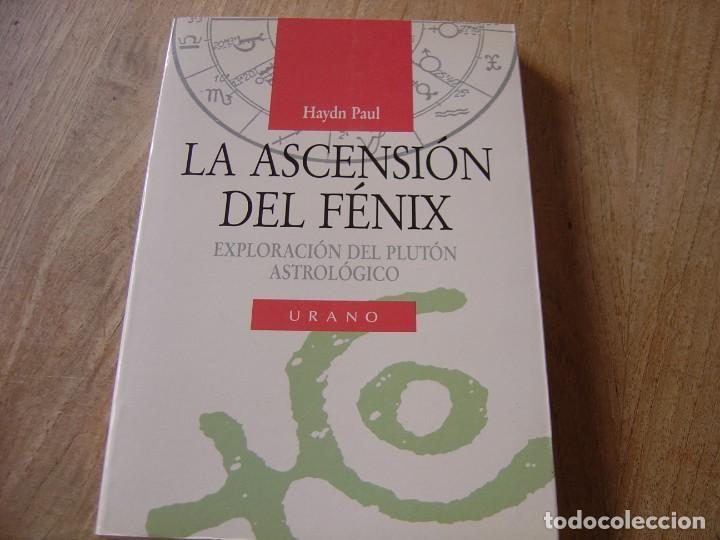 LA ASCENSIÓN DEL FÉNIX. HAYDN PAUL. ED. URANO. 1ª EDICIÓN 1991 (Libros de Segunda Mano - Parapsicología y Esoterismo - Astrología)