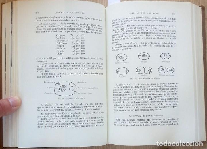 Libros de segunda mano: Los Enigmas del universo – Antonio González de Guzmán - Foto 3 - 98139635