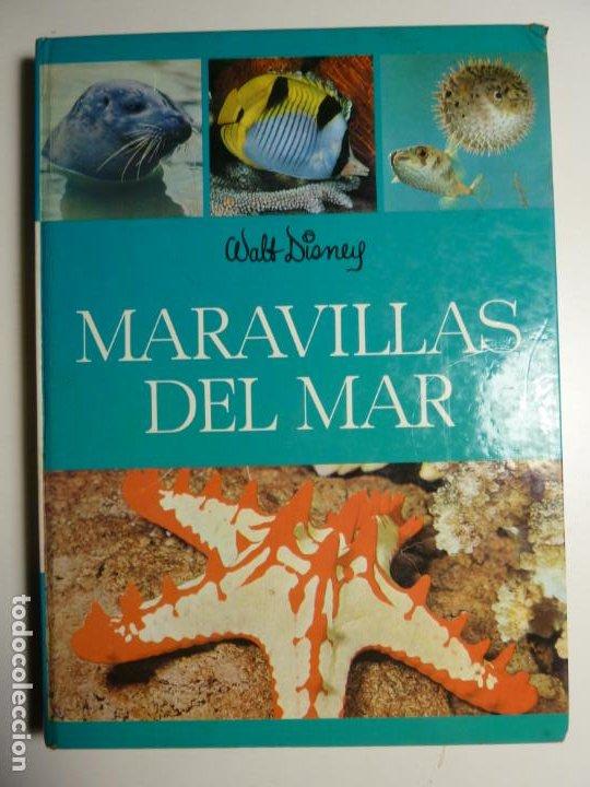 MARAVILLAS DEL MAR. WALT DISNEY. EDICIONES GAISA, S.L. 1971. (Libros de Segunda Mano - Ciencias, Manuales y Oficios - Astronomía)