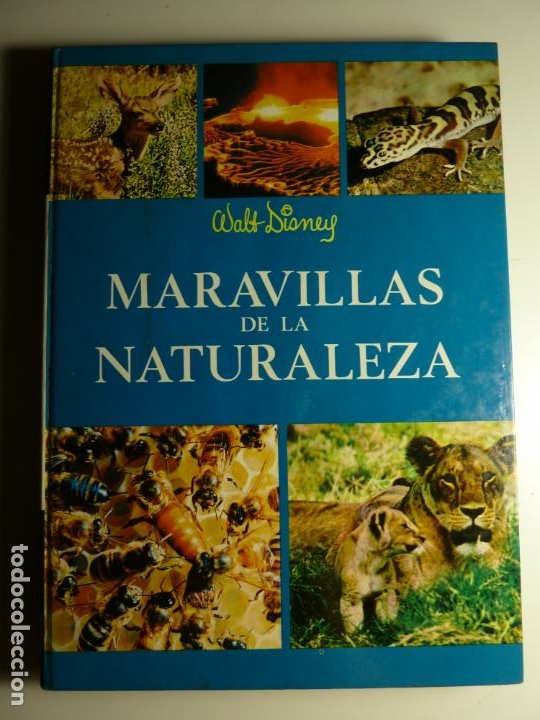 MARAVILLAS DE LA NATURALEZA. WALT DISNEY. EDICIONES GAISA, S.L. 1971. (Libros de Segunda Mano - Ciencias, Manuales y Oficios - Astronomía)