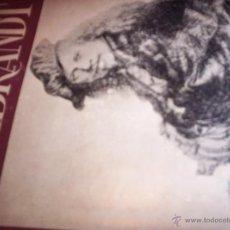 Libros de segunda mano: REMBRANDT - VAN DONGEN - ED. NAUSICA - 1943- EJEMPLAR NUMERADO. Lote 53964563