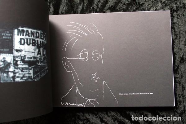 Libros de segunda mano: EL DUBLIN DE JAMES JOYCE - DESTINO - MUY ILUSTRADO - Foto 2 - 61797072