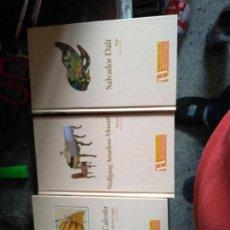 Libros de segunda mano: GRAN LOTE BIOGRAFIAS. 22 LIBROS. BIBLIOTECA ABC PROTAGONISTAS DE LA HISTORIA. Lote 168029108