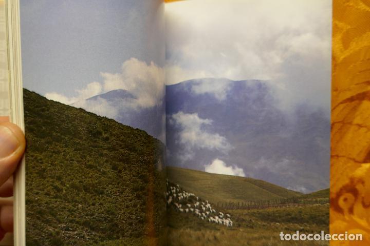Libros de segunda mano: SIMÓN BOLIVAR, EL LIBERTADOR DEMETRIO RAMOS PÉREZ - ANAYA - Foto 11 - 288547908