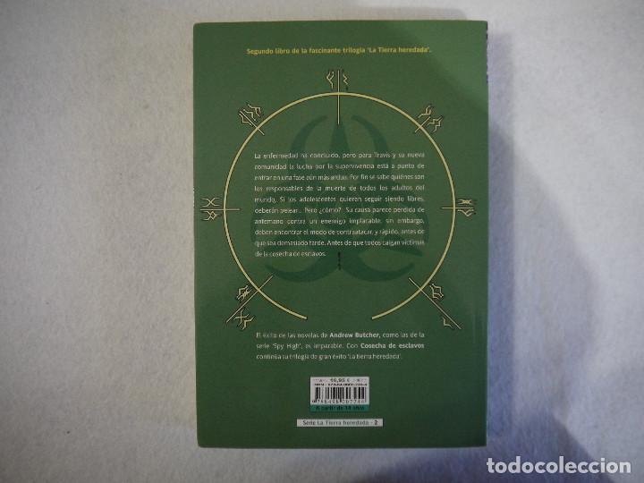 Libros de segunda mano: COSECHA DE ESCLAVOS - ANDREW BUTCHER - LA FACTORIA DE IDEAS - 2012 - Foto 2 - 149349254