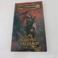Libros de segunda mano: FANTASIA DUNGEONS AND DRAGONS LAS CUEVAS SALVAJES LAIN. Lote 153543574
