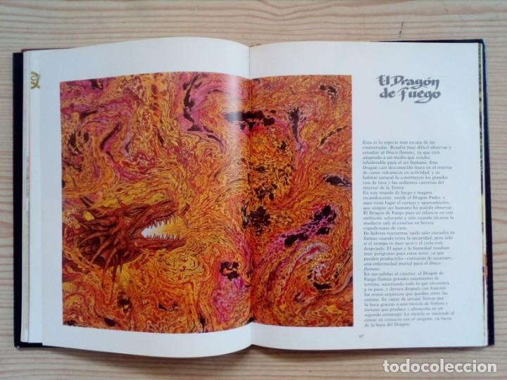 Libros de segunda mano: El Gran Libro Del Dragon - Ilustraciones De Ciruelo - Timun Mas - Foto 3 - 155867674