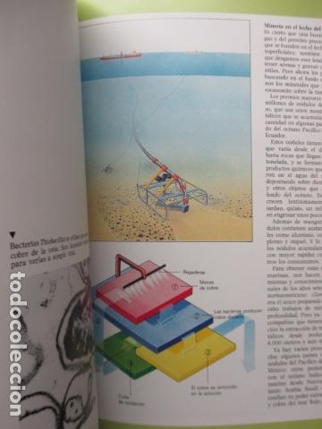 Libros de segunda mano: EL PLANETA TIERRA - DAVID LAMBE / ISAAC ASIMOV - TU MUNDO 2000 - EDITORIAL DEBATE, EXCELENTE ESTADO. - Foto 10 - 165274042