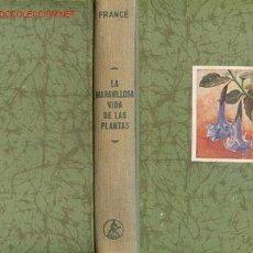 Libros de segunda mano: FRANCE, R.H. LA MARAVILLOSA VIDA DE LAS PLANTAS UNA BOTANICA AL ALCANCE DE TODOS. Lote 26100305