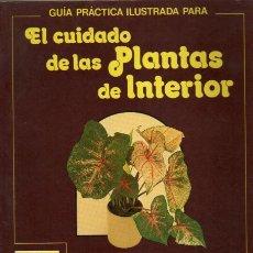 Libros de segunda mano: EL CUIDADO DE LAS PLANTAS DE INTERIOR . Lote 7568628