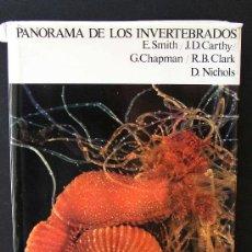 Libros de segunda mano: BIOLOGÍA. LIBRO PANORAMA DE LOS INVERTEBRADOS. Lote 8920941