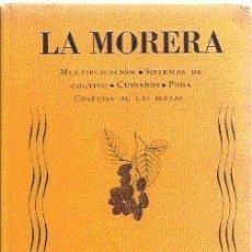 Libros de segunda mano: LA MORERA : MULTIPLICACIÓN, SISTEMAS DE CULTIVO, CUIDADOS.../ TAPA DURA CON ILUSTRACIONES / 1943.. Lote 26658382