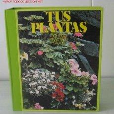 Livros em segunda mão: TUS PLANTAS .. FICHERO PRACTICO SARPE 6 FICHEROS ,..........1983 .. POR JORGE MONTORO. Lote 20527152