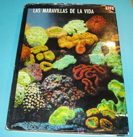 LAS MARAVILLAS DE LA VIDA. LIFE. EDIT. LUIS MIRACLE. 3ª EDICION 1968 (Libros de Segunda Mano - Ciencias, Manuales y Oficios - Biología y Botánica)