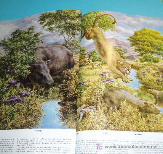 Libros de segunda mano: LAS MARAVILLAS DE LA VIDA. LIFE. EDIT. LUIS MIRACLE. 3ª EDICION 1968 - Foto 3 - 23060092