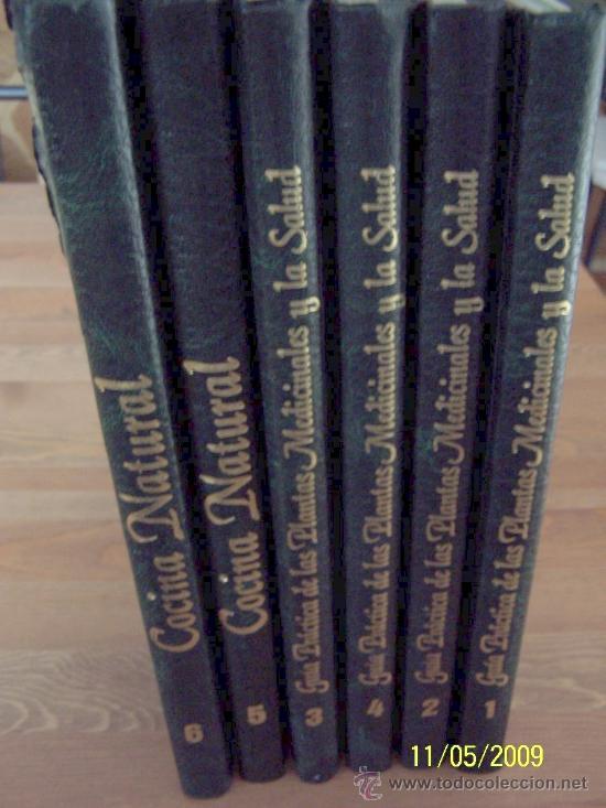 GUÍA PRÁCTICA DE LAS PLANTAS MEDICINALES Y LA SALUD Y COCINA NATURAL-6 TOMOS-EDITORS-1994 (Libros de Segunda Mano - Ciencias, Manuales y Oficios - Biología y Botánica)