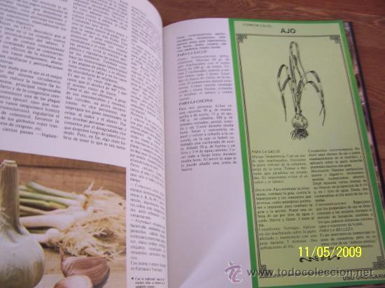 Libros de segunda mano: GUÍA PRÁCTICA DE LAS PLANTAS MEDICINALES Y LA SALUD Y COCINA NATURAL-6 TOMOS-EDITORS-1994 - Foto 6 - 25077543