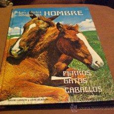 Libros de segunda mano: LIBRO GUIA MANUAL LOS FIELES AMIGOS DEL HOMBRE PERROS GATOS CABALLOS.-PERRO GATO CABALLO. Lote 25996346