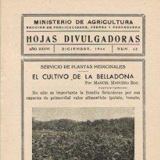 Libros de segunda mano: HOJAS DIVULGADORAS, MINISTERIO DE AGRICULTURA,DICIEMBRE 1944 Nº45, EL CULTIVO DE LA BELLADONA.. Lote 17344604