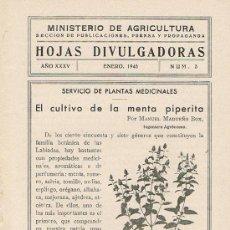 Libros de segunda mano: HOJAS DIVULGADORAS, MINISTERIO AGRICULTURA, ENERO 1943, NUM. 3, EL CULTIVO DE LA MENTA PIPERITA. Lote 17369800