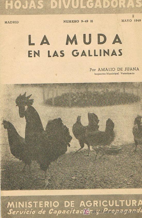 HOJAS DIVULGADORAS, MINISTERIO AGRICULTURA, MAYO 1949, NUM. 9-49 H, LA MUDA EN LAS GALLINAS (Libros de Segunda Mano - Ciencias, Manuales y Oficios - Biología y Botánica)
