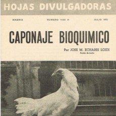 Libros de segunda mano: HOJAS DIVULGADORAS, MINISTERIO AGRICULTURA, JULIO 1952, NUM. 14-52 H, CAPONAJE BIOQUÍMICO. Lote 17372803