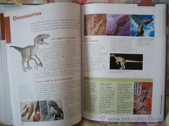 Libros de segunda mano: CIENCIAS DE LA TIERRA Y DEL UNIVERSO - Foto 11 - 30846311